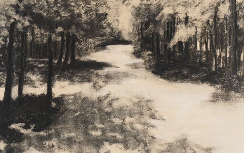 Penny's Lane charcoal study on laid paper 2017 12x18 Carolina Elena