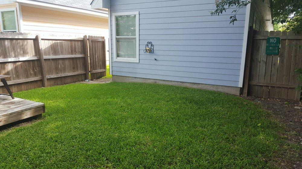 1112 Jones backyard 2.jpg