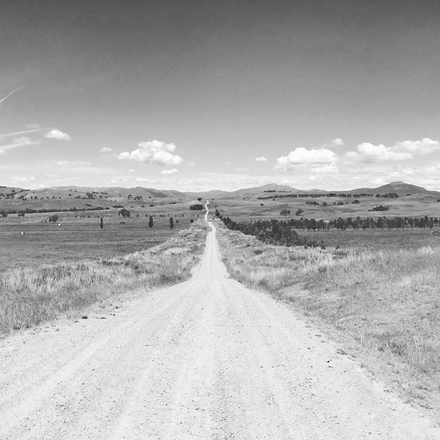 The road to the high country  #alpine #roadtrip #freedom