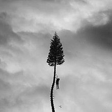 Manchester Orchestra // A Black Mile To The Surface - Release Date: July 28, 2017Label: Loma Vista Recordings / Favorite Gentleman