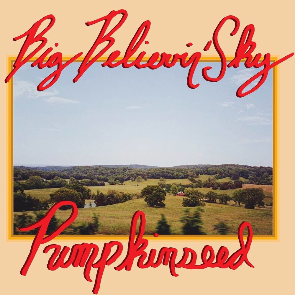 Pumpkinseed - With Pumpkinseed's new album release approaching (it drops on June 15th, ya'll!), I had the opportunity to chat with vocalist / guitarist Daniel Gardner about how the album came together, influential artists, tour plans, and more! We gave Big Believin' Sky a spin last week-- click here to hear our thoughts on the album.