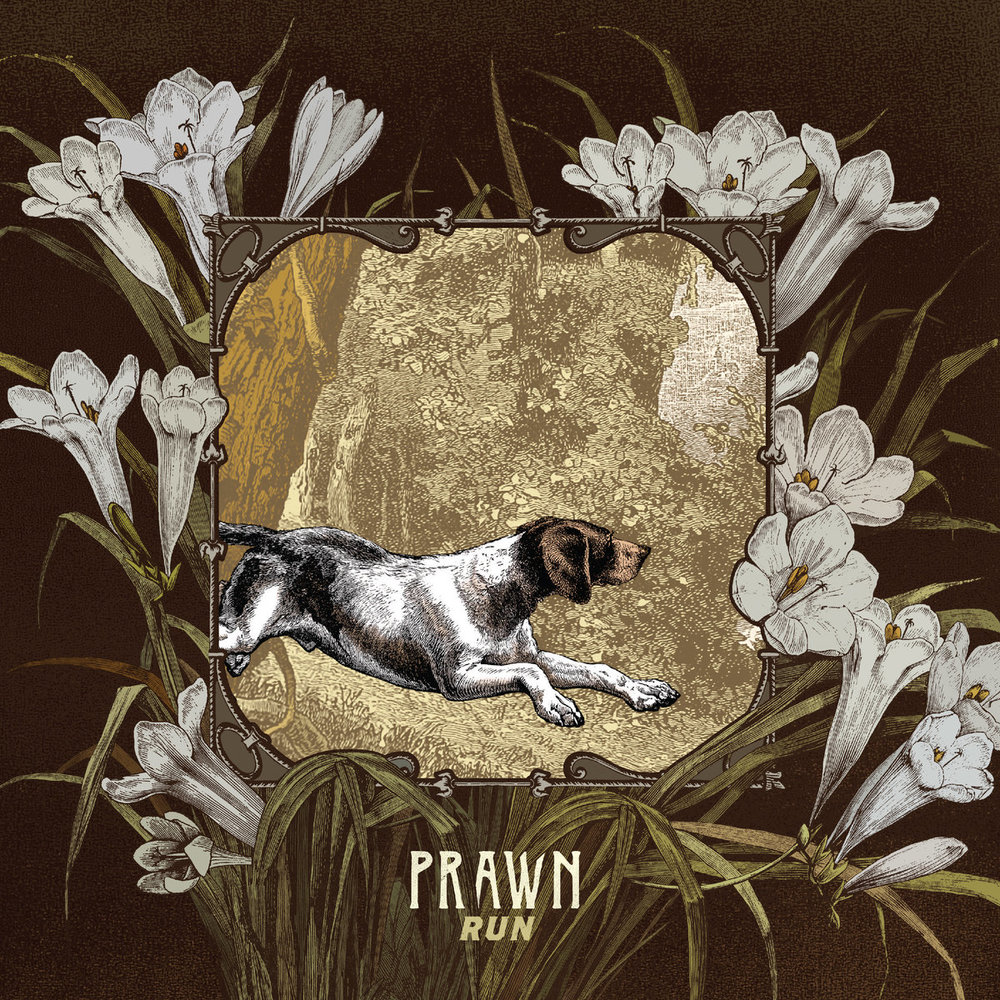 Prawn // Run - Release date: September 22, 2017Label: Topshelf Records