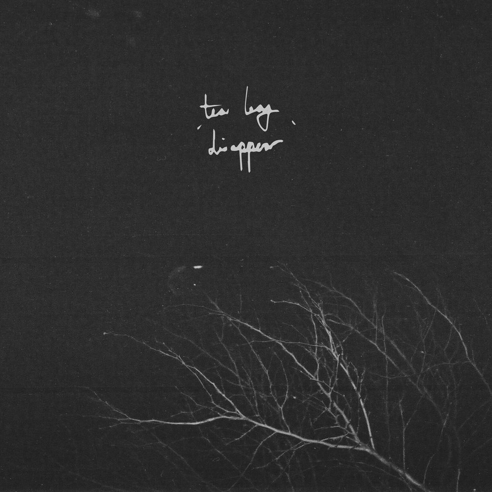 Tea Leaf - EP: DisappearRelease date: September 21, 2018Label: Beth Shalom Records