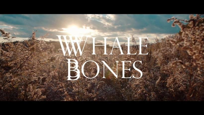 Whale Bones - Single: BackyardVideo release date: January 19, 2018