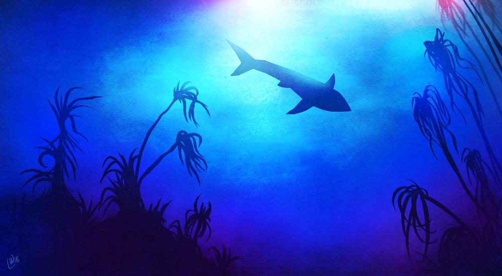 shark_study.jpg