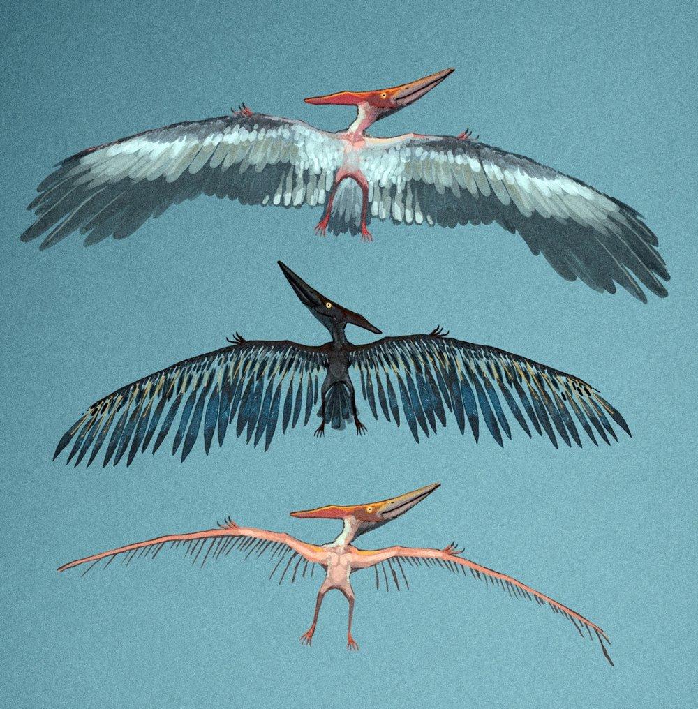 """Pterodactyl"" false reconstruction,"" acrylic and watercolour"