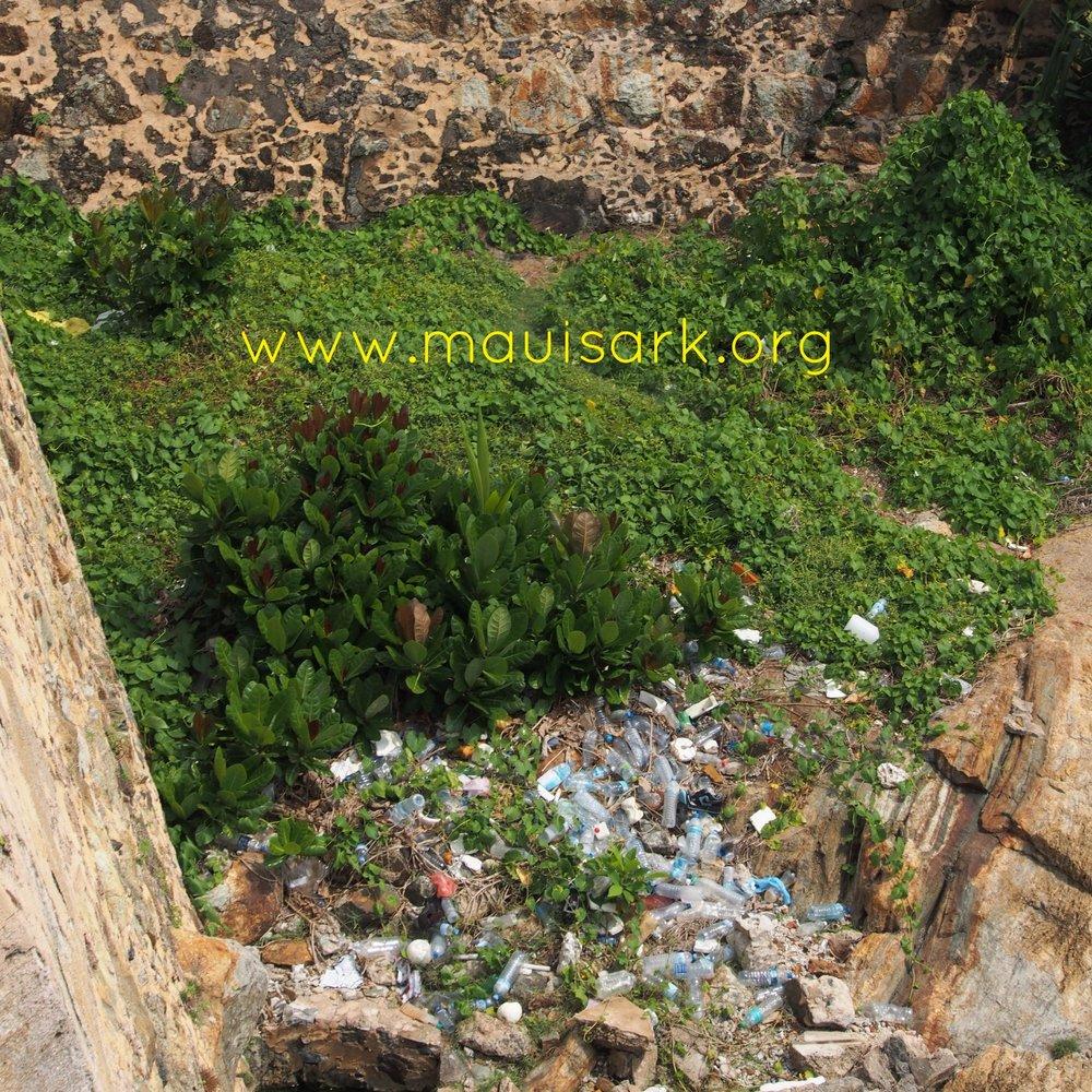 Plastic flotsam, Galle Fortress, Sri Lanka