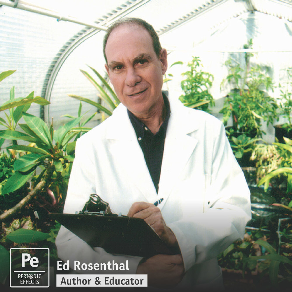 Ed Rosenthal, The Guru of Ganja in the cannabis industry. Ed is releasing a new book, Beyond Buds: Marijuana Extracts and Cannabis Infusions