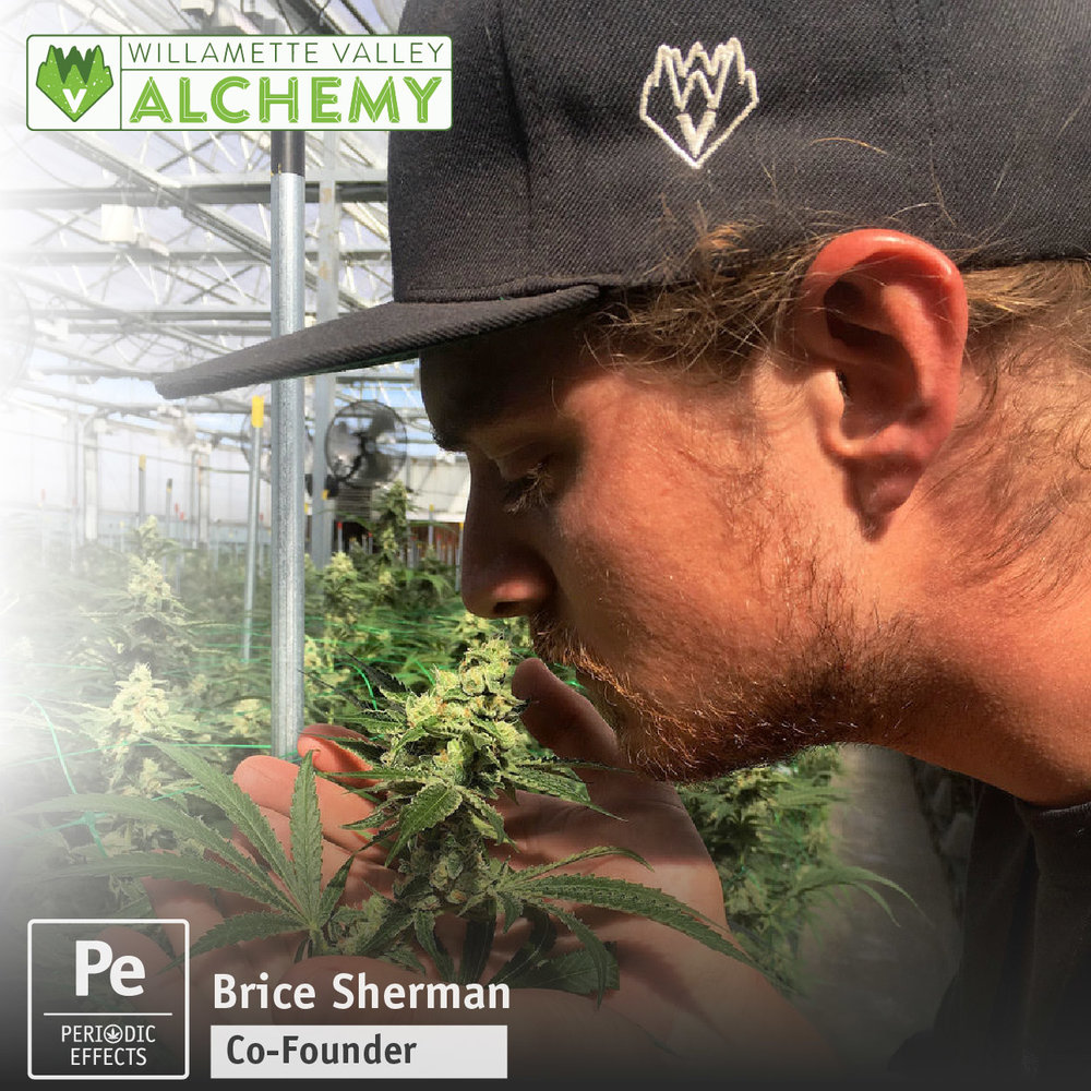 Brice Sherman, Co-Founder of Willamette Valley Alchemy, a Cannabis Processor making Extracts, Concentrates and Edibles in Oregon