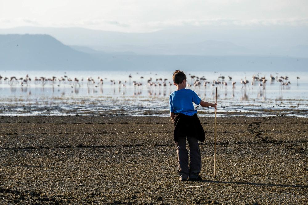 Lake Manyara walk, Tanzania23.jpg