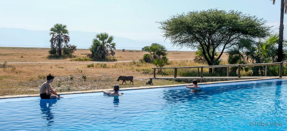 Maramboi tented camp, Tanzania41.jpg