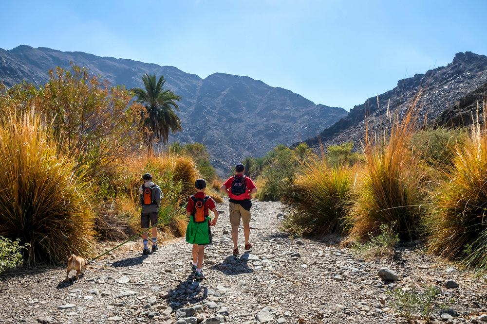 9 hiking the wadi.jpg