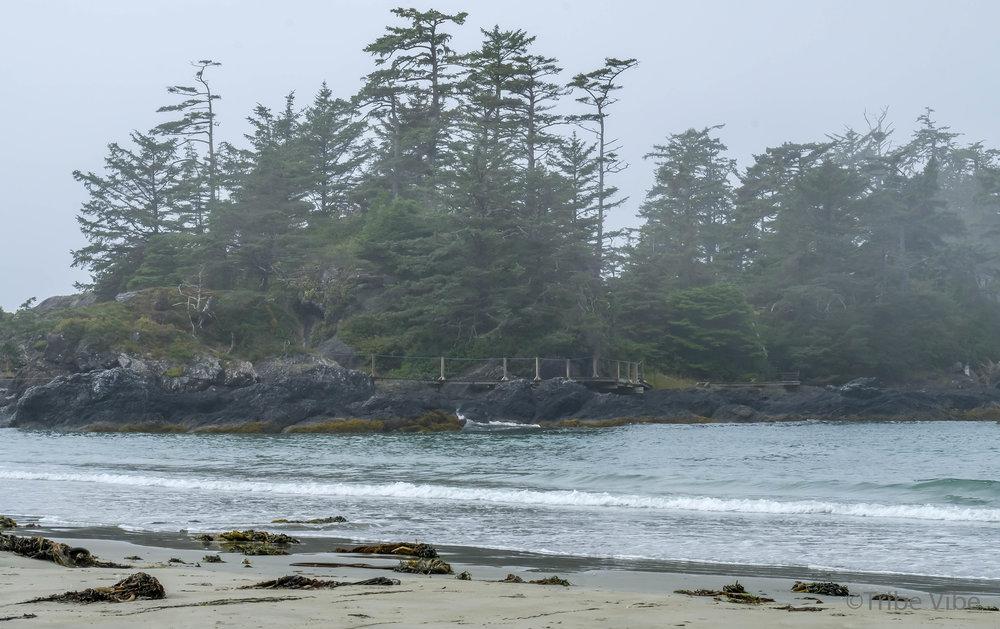 tofino chesterman beach54.jpg