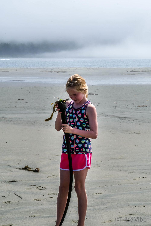 tofino chesterman beach98.jpg