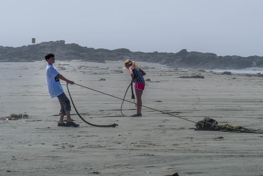 tofino chesterman beach106.jpg