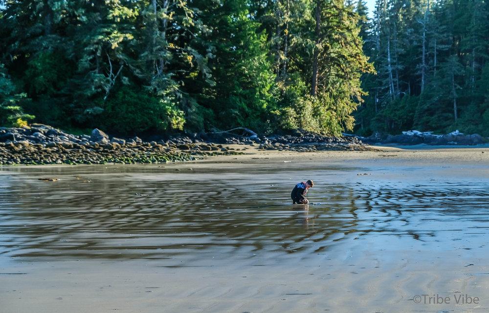 tofino, schooners beach22.jpg