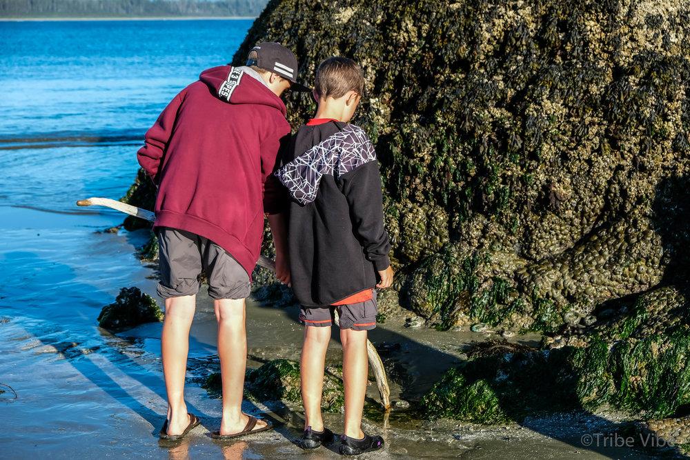 tofino, schooners beach11.jpg