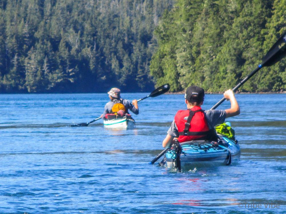 tofino kayaking56.jpg