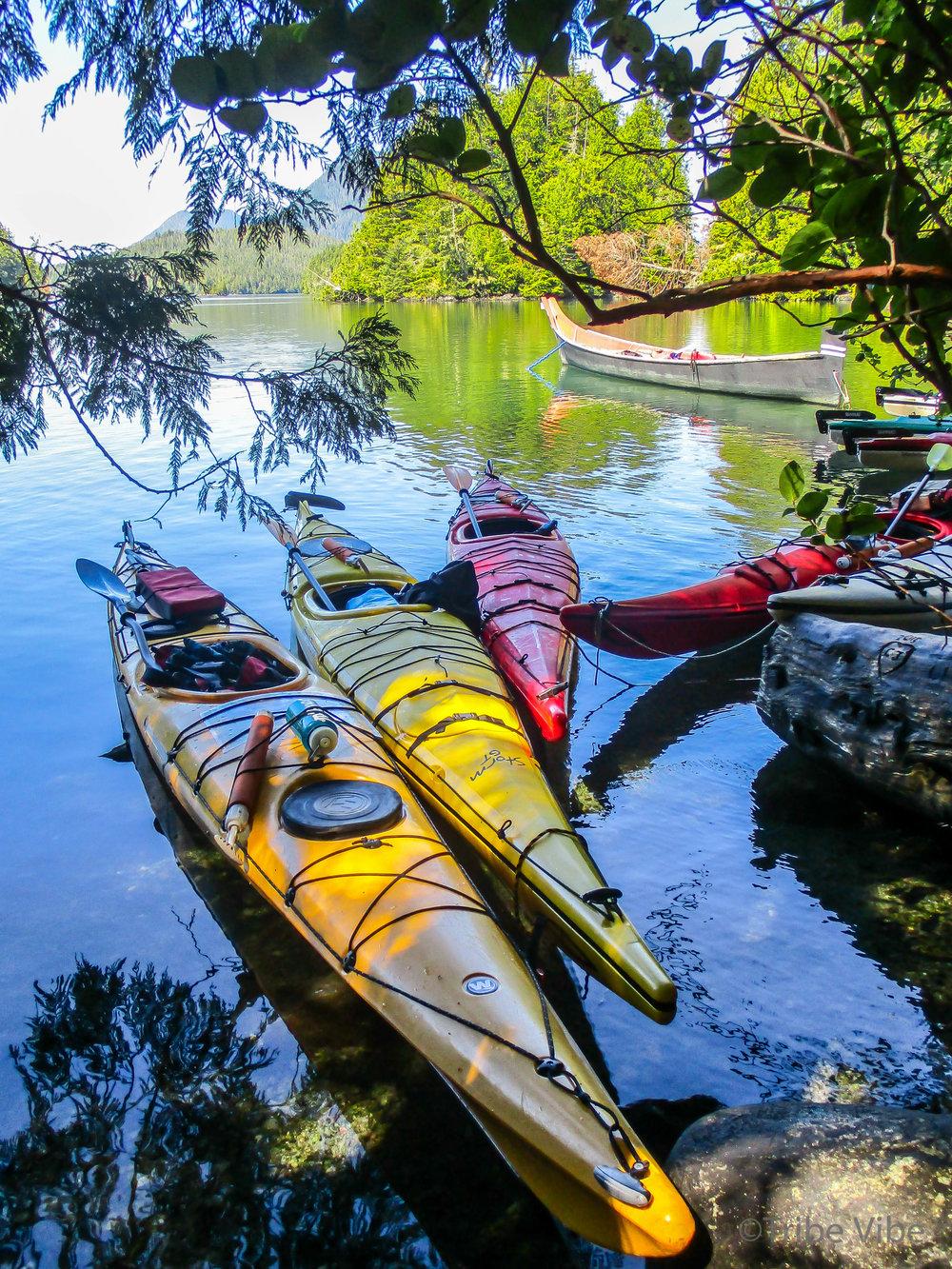 tofino kayaking35.jpg
