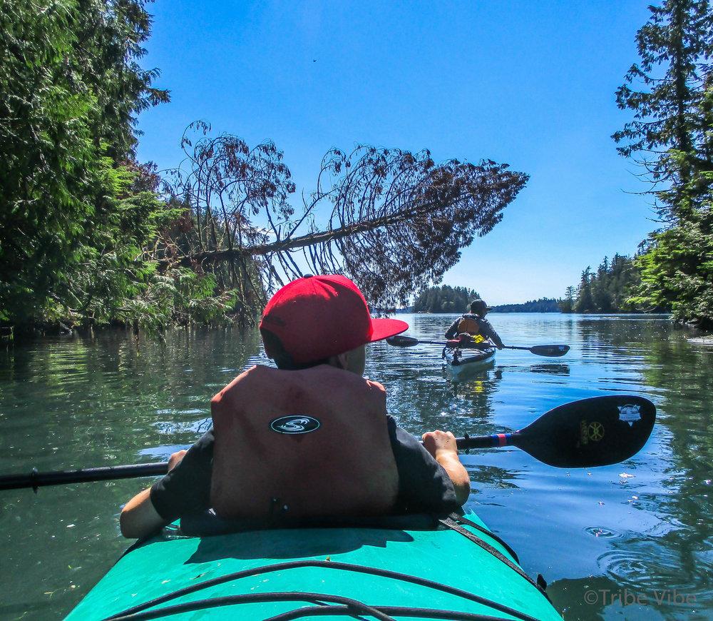 tofino kayaking34.jpg