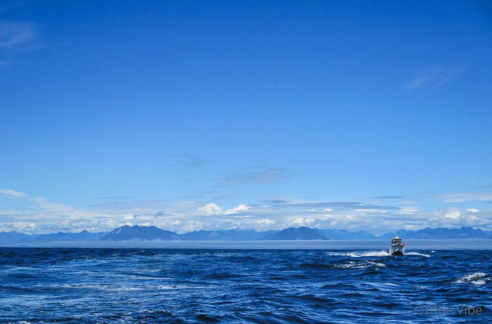 tofino fishing18.jpg