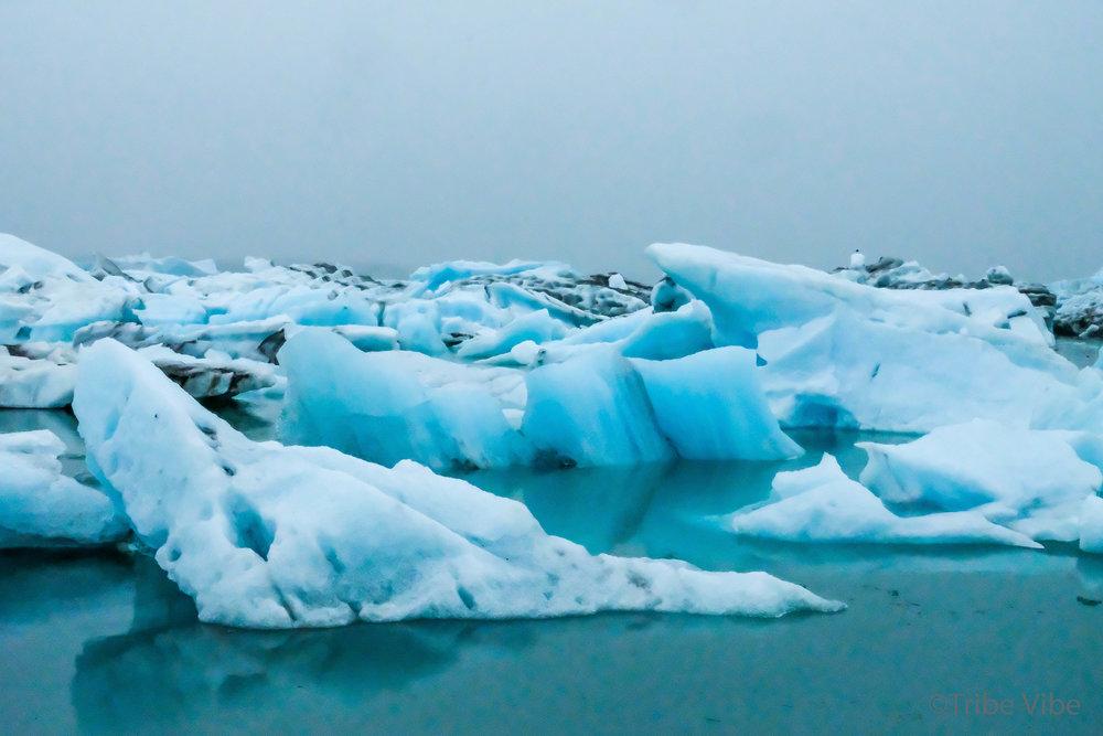 Jokulsarlon Glacier Lagoon.jpg