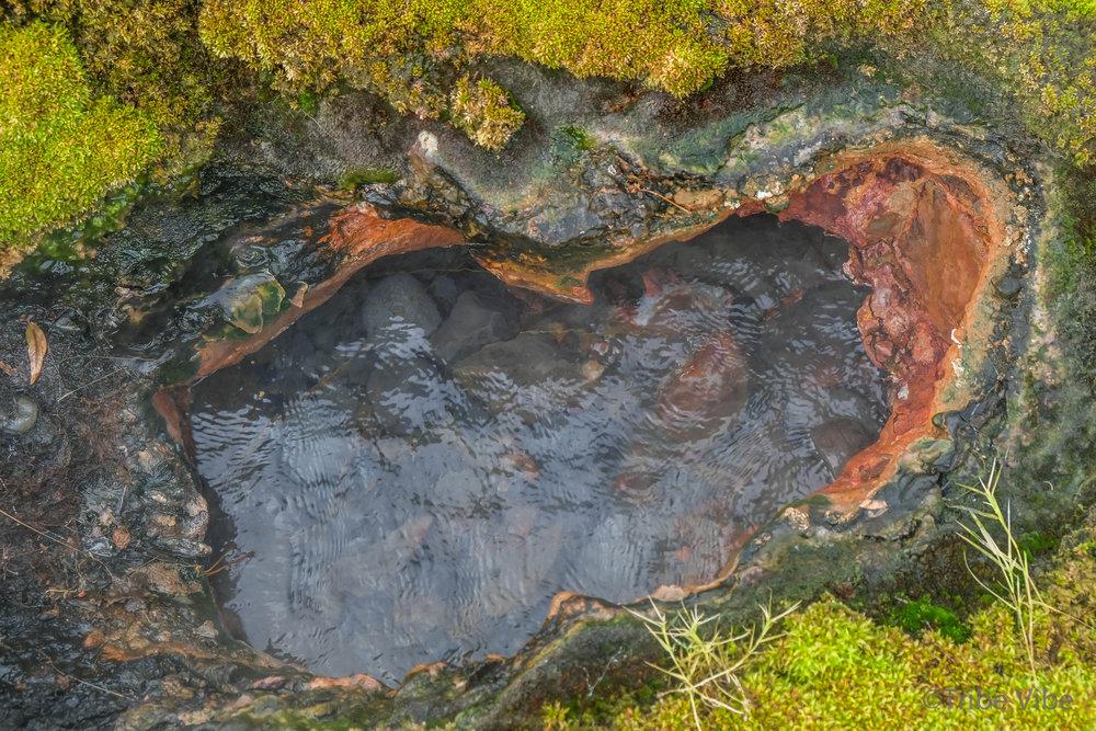 Secret lagoon Fludir Iceland-5.jpg