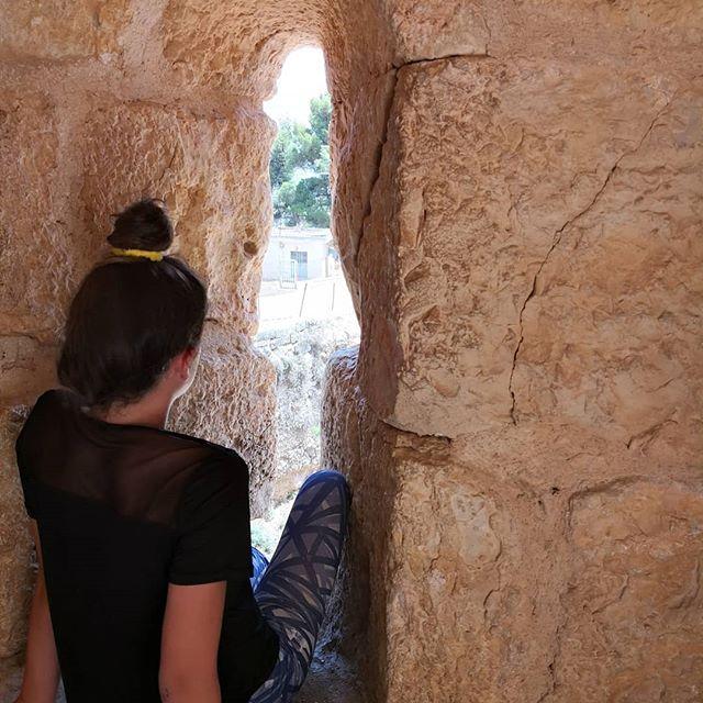 #rabad #ajlouncastle#lovejo #holiday #history #jordan #travel #travelwithkids #wildjordan #ajloun #castle