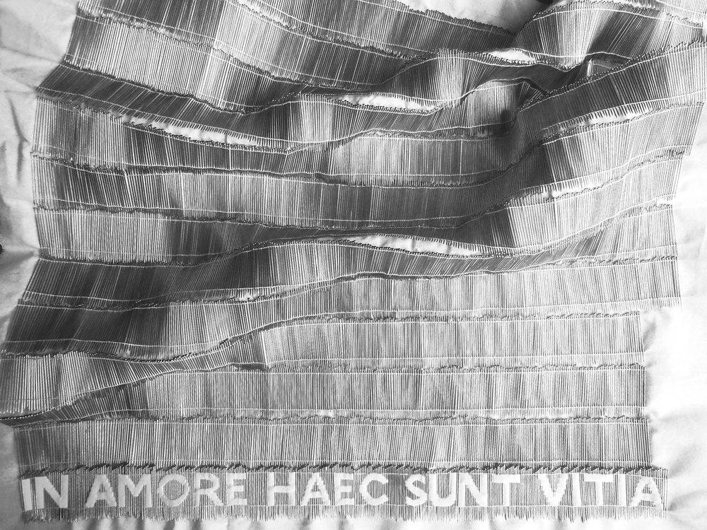 Elena Lara Bonanomi - In amore haec sunt vitia