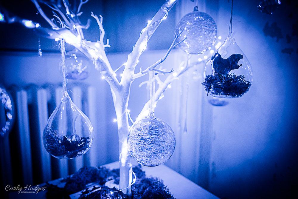 Saltram Lights-14.jpg