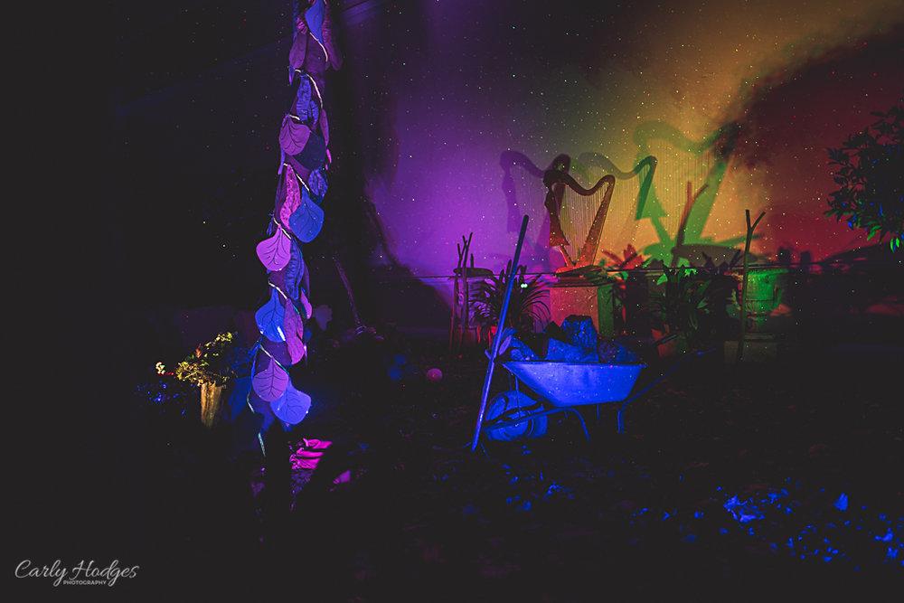 Saltram Lights-23.jpg