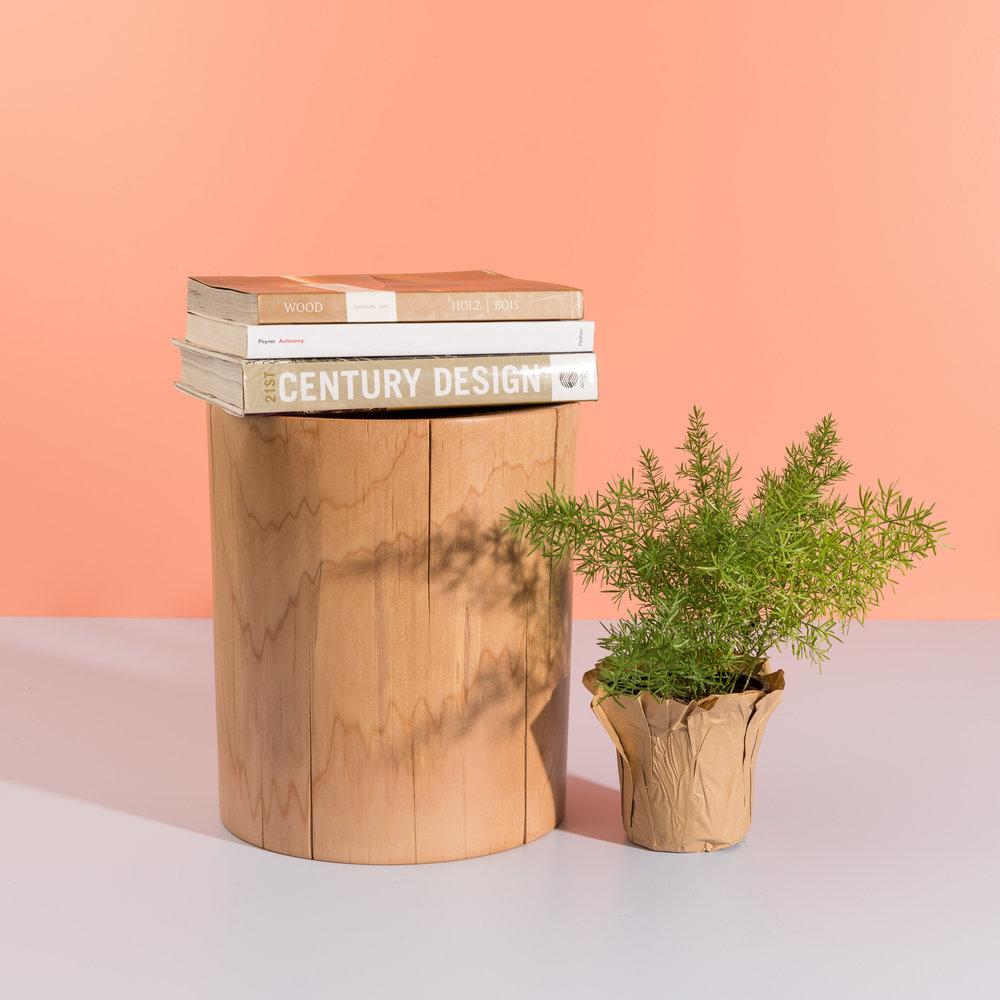 stump (1 of 1).jpg