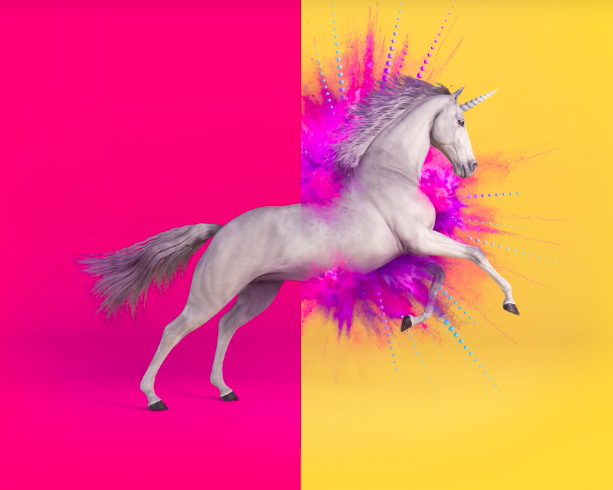 Do you have unicorn magic in you? - It takes a certain type of person to work for a scaleup. Victoria's scaleup community is on the hunt for individuals that can bring that magic to the table. Have you got what it takes?
