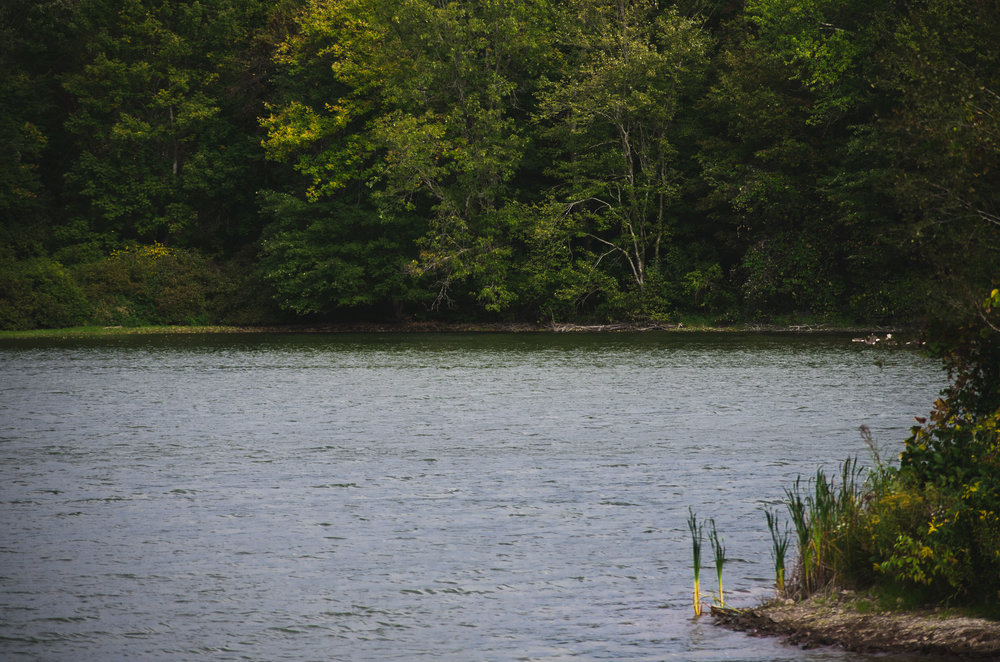 reservoir in wallingford.jpg