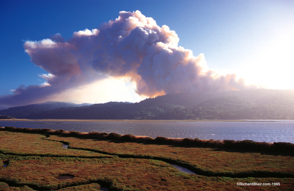 Fire Cloud and Tomales Bay, 1995 Mt. Vision Fire. Photo used by permission ©richardblair.com