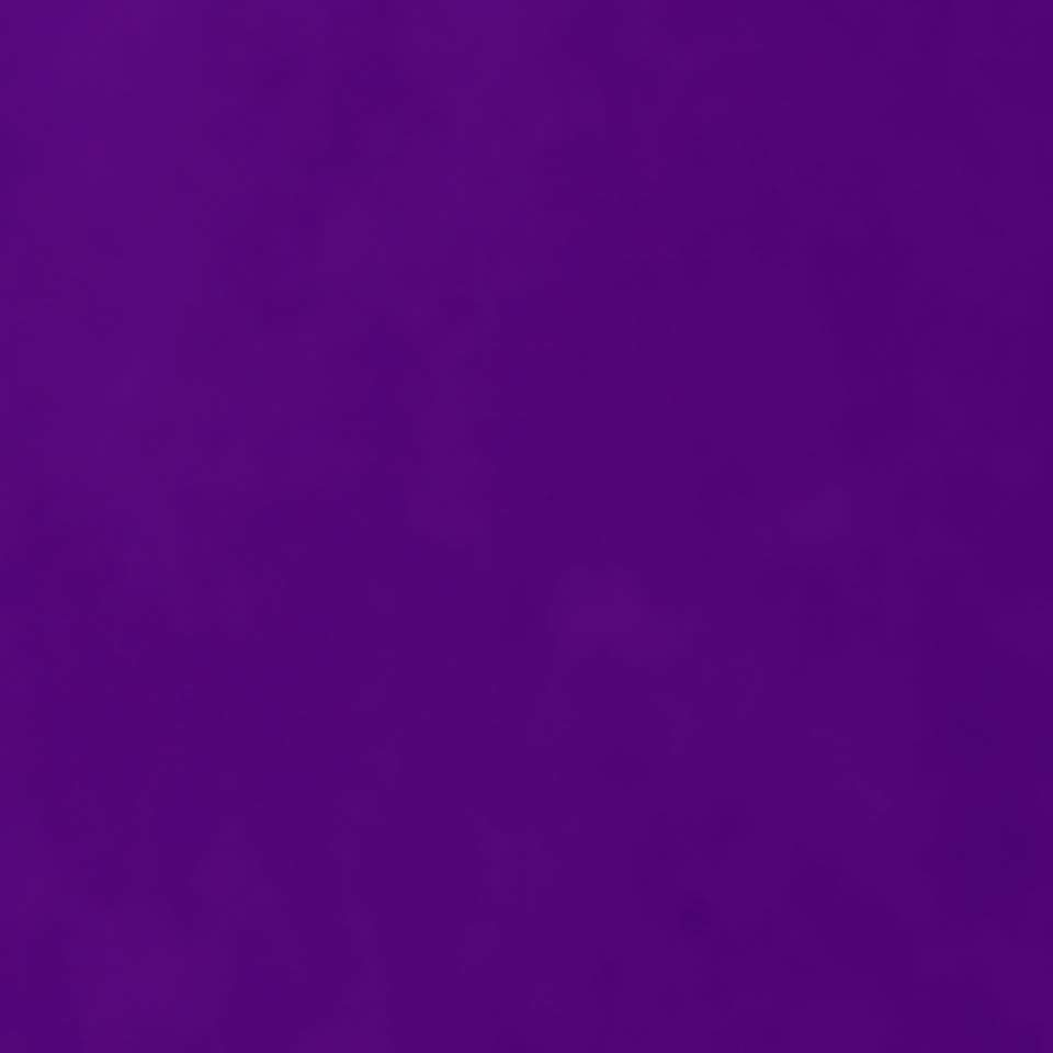 Purple 2 - short bio for purple 2