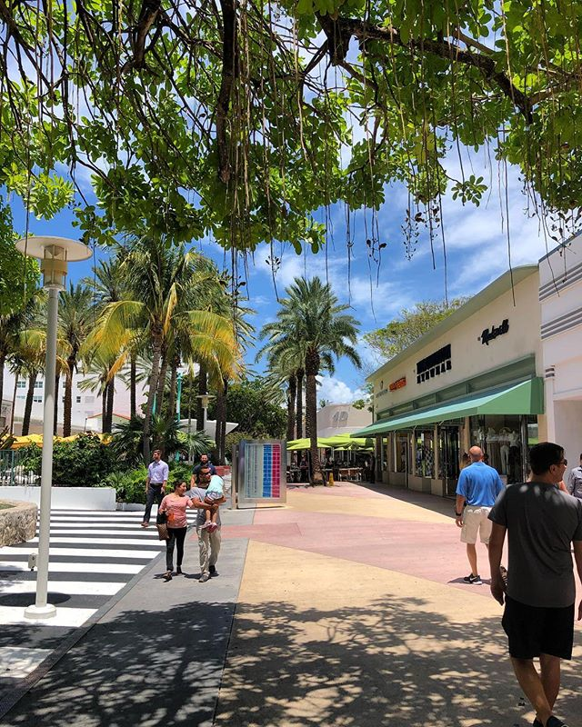 👋Oh hai! Headed to Miami Beach? We love strolling under the trees of Lincoln Road after an amazing lunch at @booksandbooks 📚! . . . #miamibeach #lincolnroad #lesbiantravel #lesbianswhotravel #lgbt #lgbtqtravelers #lesbians #travelblog #travelblogger #travel #travels #traveltips #gay #instapic #sunshine #outdoors