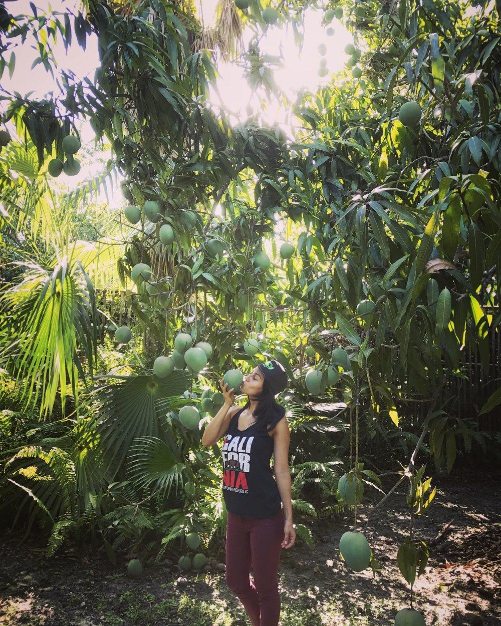 Kisses under the mango rain.