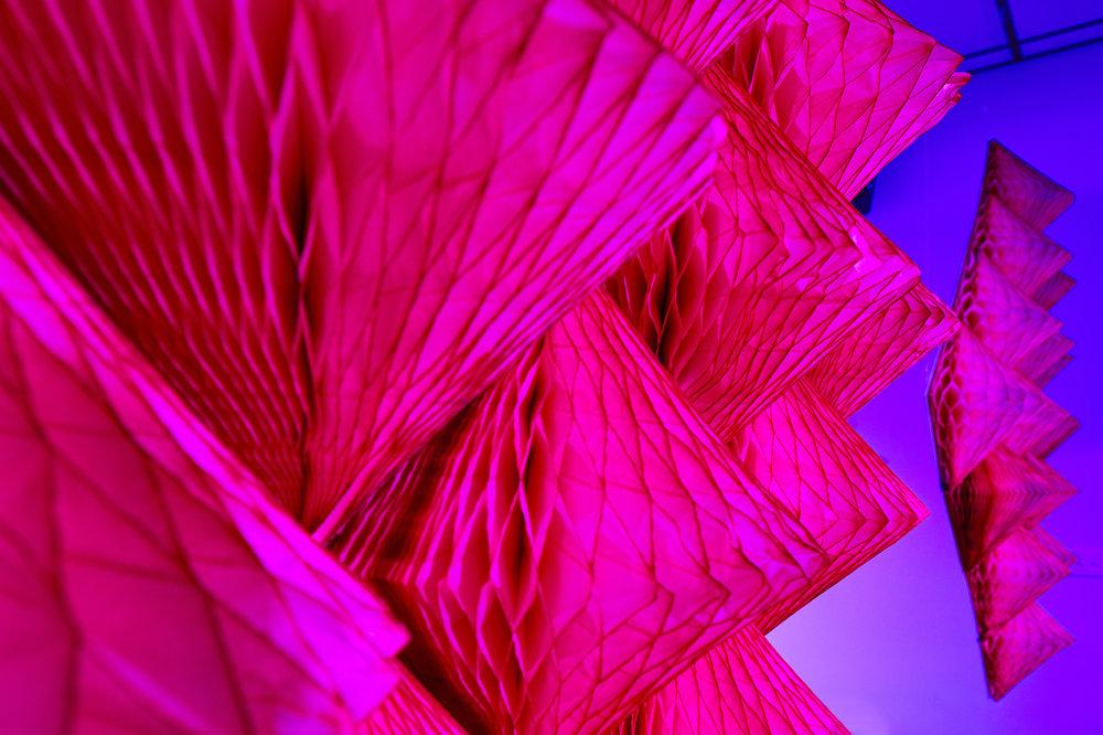 Collarts pink honeycomb 2.jpg