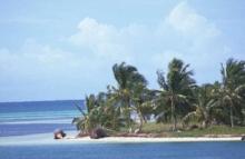 Tropical Paradise 138.jpg