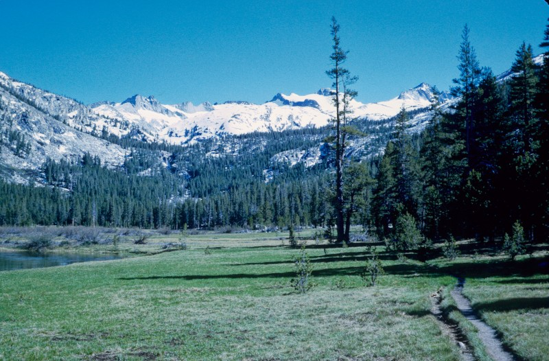 Above: Tuollumne Meadows, looking up toward Donahue Pass and Donahue Peak.