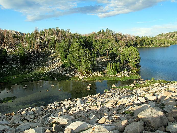 Cove Lake