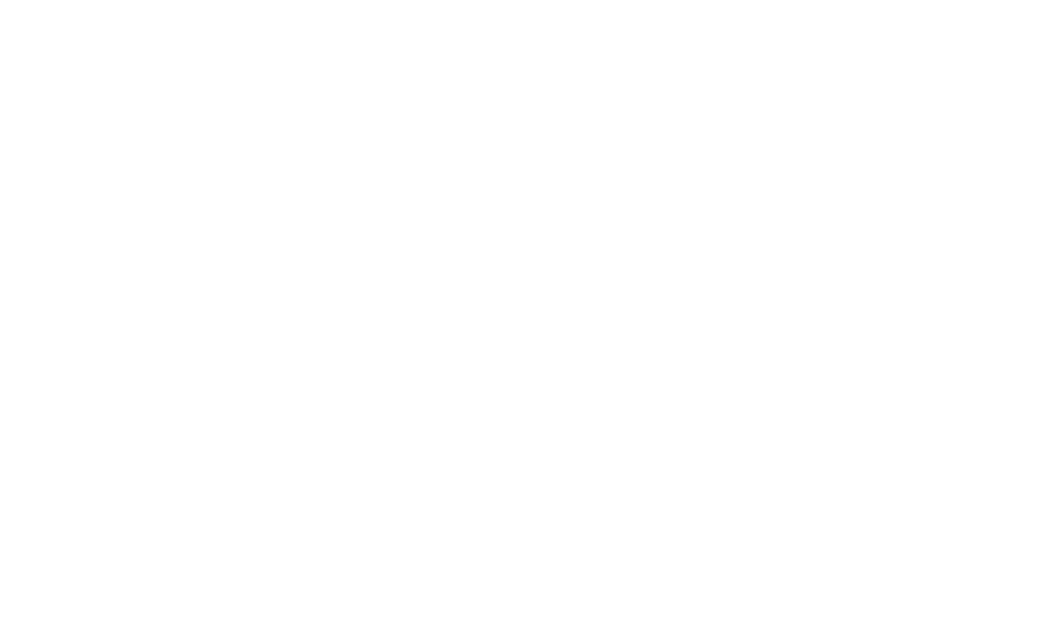 Erica Torres Photography