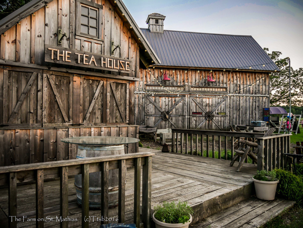The Farm on St. Mathias is the perfect rustic setting for an outdoor wedding, reception, or party.  For more information on planning, scheduling and cost for an event contact Arlene at 612-695-2721 |  info@thefarmonstmathias.com