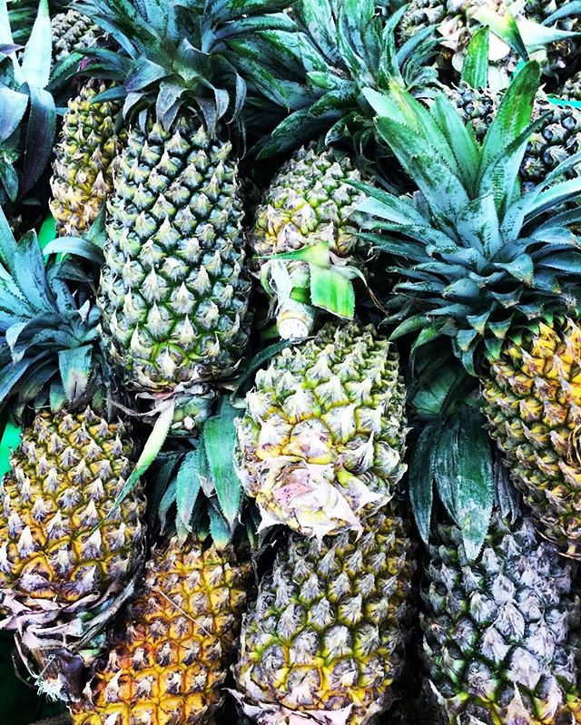 🍍 Pineapples 🍍 They smell like tropical paradise and are great to use on your skin! Pineapples contain high amounts of Vitamin C and contain anti inflammatory properties. It can help to reduce redness associated with acne. It's a great ingredient to use as an exfoliant and can help keep your skin firm and moisturised! Have you ever used Pineapple for your skin? Do you have any tips or recommendations? Leave me a comment and let me know!🍍💛🍍 #jasminesbeautykitchen #diybeautytips #diybeautyproducts #pineapplebenefits #pineapple #diy #homemadebeautyproducts #naturalbeauty