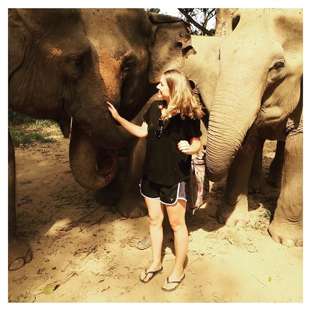 😍😍😍#Thailand #elephanthaven #elephanthaventhailand #elephants #kanchanaburi #travelling #myheaven #myhappyplace