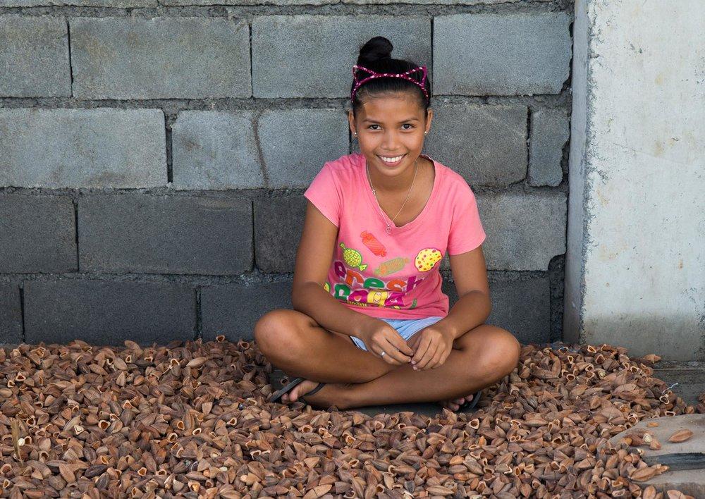 Mount Mayon Volcanic Pili Nuts