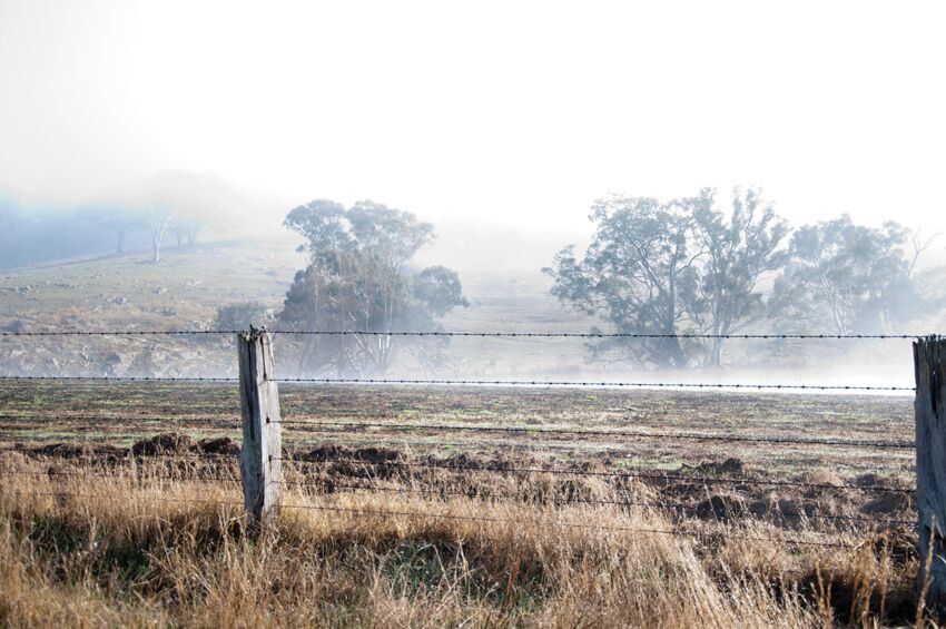 Lee Pearse is a celebrant located in central Victoria