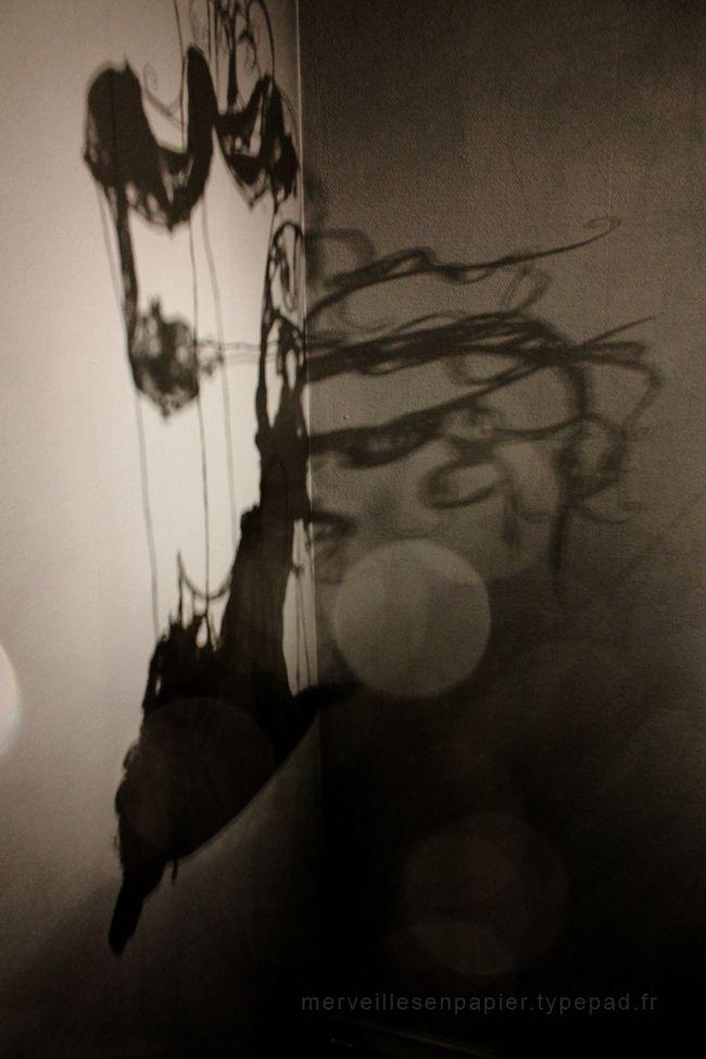 un royaume de dentelle ombres 2.jpg