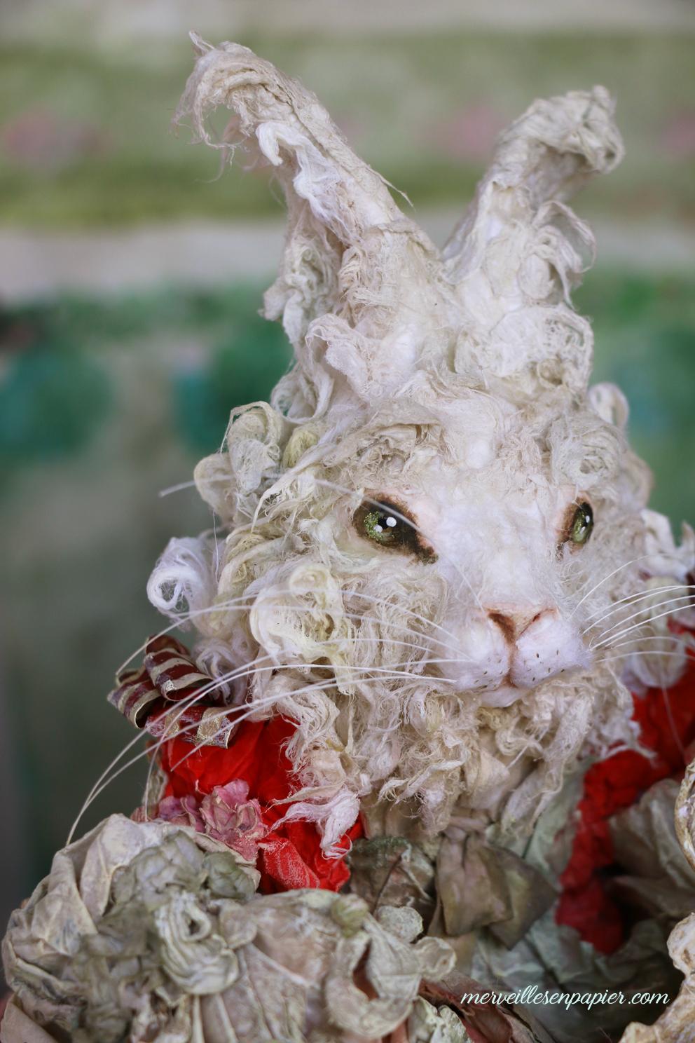 white-rabbit-musician-3.jpg
